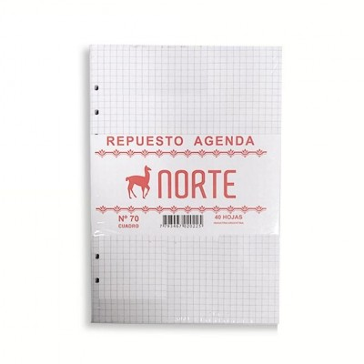 Repuestos cuadriculado para agenda Nº8 Norte