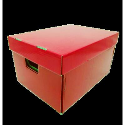 Caja de archivo americana alta 42x32x25 cm roja