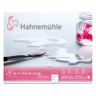 Block Acuarela 40x50 cm de 300 gramos Harmony Grano Fino x12 Hojas Hahnemühle