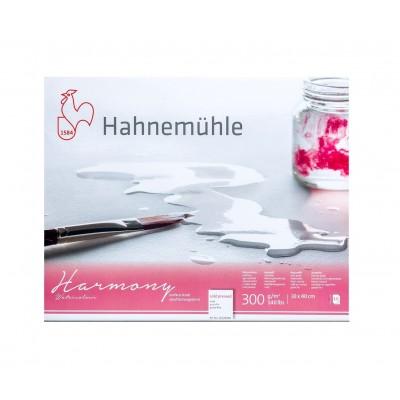 Block Acuarela 30x40 cm de 300 gramos Harmony Grano Fino x12 Hojas Hahnemühle